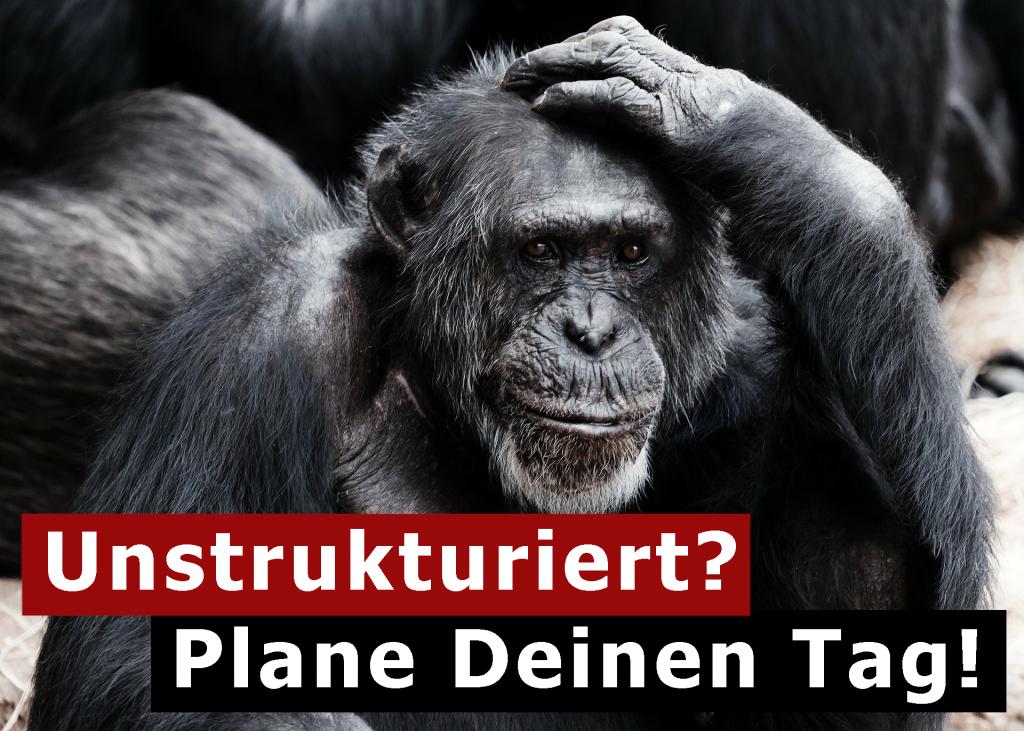 Tag planen und strukturieren - Affe mit fragendem Blick, unstrukturiert? Dann plane deinen Tag!